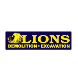 Lions Group Inc.